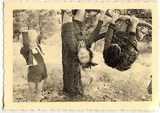 Enfants perchés sur branche d'arbre - photo ancienne an. 1950