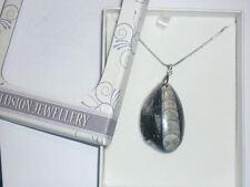 cristalloterapia PENDENTE COLLANA FOSSILE ORTHOCERAS minerale ARGENTO ciondolo