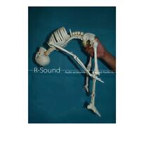 Bone Model Of Human Bone Model Spine Bendable Cervical Spine Bendable