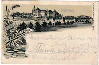 AK Gruss aus Torgau - Schloss Hartenfels und Brücke -Verlag Troitzsch Litho 1899