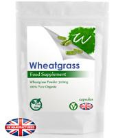 Wheatgrass 500mg - 30/60/90/120/180 Capsules - Mental Energy Recovery, UK (V)