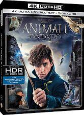 Animaux Fantastiques et Où les Trouver (Blu Ray 4K UHD + Blu Ray) Photos Ultra