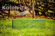Live Catch Trap - Squirrel, Rat, Rabbit - Spring door
