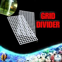 Grid Divider Tray Egg Crate - Holder Aquarium Fish Tank Filter Bottom Isolate