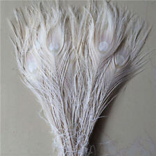 10-100pcs natural peacock tail feathers 10-12inches/25-30cm
