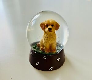 Cockapoo Snow Globe With Grey Paw Print Resin Base And Silver Glitter