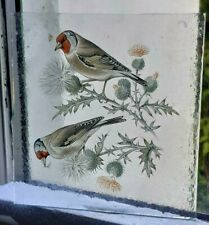 Stained Glass Goldfinch birds Traditional Kiln fired insert  12.5 CM X 12 CM