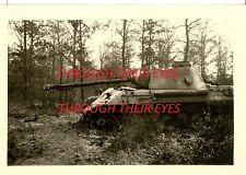 DVD WW2 US SOLDIERS PHOTO ALBUM  LUFTWAFFE PLANES KITZINGEN PANZERS  NOSE ART