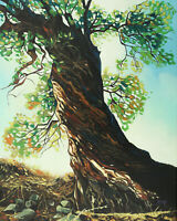 Original Artwork oil painting Big tree on stretch canvas, nature 16''x20""