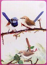 SWAP CARD. SUPERB FAIRY WREN FAMILY / BLUE WRENS. MODERN. WIDE. RARE. MINT