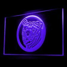 210020 Bull Dog Pet Shop Logo Feed Healthy Display LED Light Neon Sign