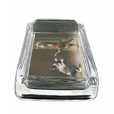 """Funny Cat Glass Ashtray D11 4""""x3"""" Silly Crazy Meow Cool Kitten"""