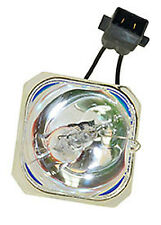 REPLACEMENT BULB FOR EPSON EX31B BULB ONLY, EX51 , EX51B , EX71 , H300A