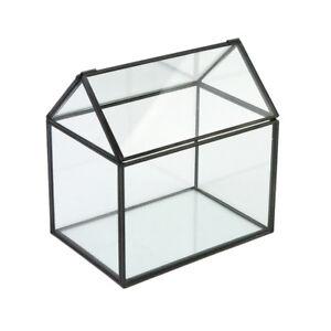 Irregular Glass Geometric Terrarium Box Succulent Plant Planter Art Box #5