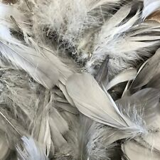 Goose Nagoire Feathers 10 grams - Grey Silver ((SECONDS))
