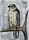 Framed canvas art print giclee Harrier buzzard bird
