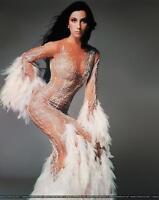 Cher Elegant Dress With Feathers 8x10 Photo Print