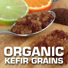 TOP Quality Organic Water Kefir Grains - 1/4 cup Organic Probiotic - DEHYDRATED