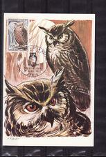 carte  1er jour   nature  oiseau grand duc  Paris    1972