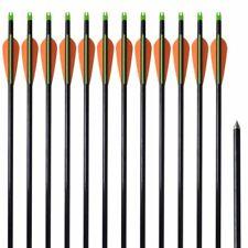 vidaXL 12x Frecce per Arco Composito Standard in Fibra di Vetro Tiro Faretra