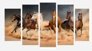 """Horses Galloping Different Coloured 5 Split Panel Framed Canvas Pictures 28x40"""""""