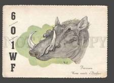 Radio Worldwide Postal History Stamps