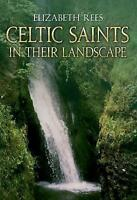 Celtic Saints: In Their Landscape-ExLibrary