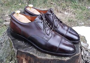 Alden 2160 - Straight Tip Blucher in Color #8 Shell Cordovan
