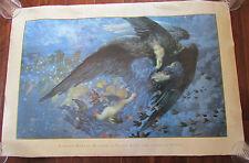 Edward Robert Hughes Night With Her Train Of Stars 1998 Art Poster Print 36x24