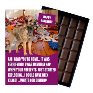 Border Terrier Birthday Card Dog Lover Gift 100g Novelty Chocolate Greeting UK
