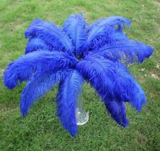 Wholesale 100pcs ostrich feathers decor wedding!6-8inches choose color
