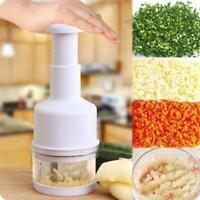 Stainless Steel Hand Press Vegetable Cutter Kitchen Ginger Onion Garlic Chopper