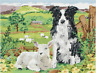 Anchor - Tapestry Kit - Border Collie and Lamb - Size: 30 x 40 cm - MR7004