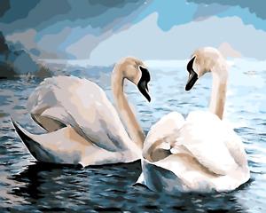 Large Paint By Numbers Kit 50*40cm 8103 Fun Art Decor Swans OZ