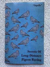 pigeon racing pigeons Squills lofts homing secrets birds