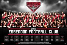 """AFL ESSENDON BOMBERS 2016 TEAM POSTER """"OFFICIAL & LICENSED"""" BRAND NEW"""