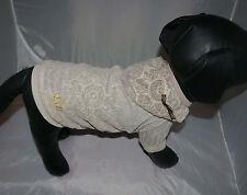 7423_Angeldog_Hundekleidung_HundeBluse_Hund Pulli Kl_Hundekleid_Chihuahua_RL31_S
