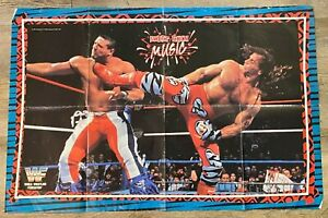 """1996 WWF Wrestling Reversible Poster """"Sweet Chin Music"""" or Sunny - Titan Sports"""