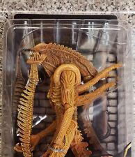 "7"" Inch NECA Sewer Mutation Warrior Xenomorph NECA Alien SDCC 2017 Figure"