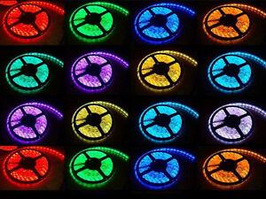 3528 SMD 300 LED STRIP 5M LIGHTING 12V COOL WARM WHITE RED BLUE GREEN IP21 IP65