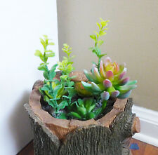 Artificial Set of 8 Finger Plants With Succulent Grass