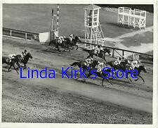 Triple Crown Photograph Kentucky Derby, Preakness & Belmont CBS-TV Horse Race