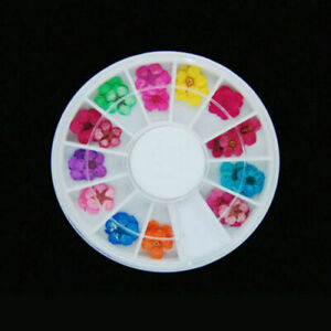 12/24 Colour DIY Nail Art Dried Flowers 3D Flower Decoration Nails Sticker Tips