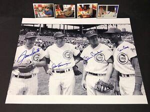 Ron Santo Ernie Banks Don Kessinger & Glenn Beckert Cubs Signed 16x20