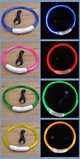 Pet Led Light-Up Glow-in-the-dark Usb Rechargeable Collar Dog Night Safety Flash