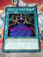 Carte Yu Gi Oh RIDEAU DE MAGIE NOIRE LEDD-FRA14 x 2