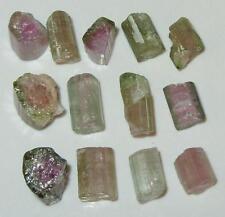 30.75ct Lot 13pcs Watermelon Tourmaline Rough Crystals & Pieces SPECIAL