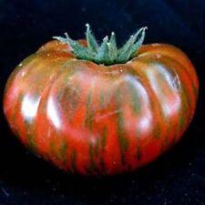 Chocolate Stripe Tomato *Heirloom* Non-Gmo (50 Seed's) 2018