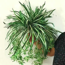Festive & Party Supplies Home & Garden 65cm Hanging Ornament Green Plant Crafts Diy Rattan Wall Decoration Simulation Bracketplant Chlorophytum Party Artificial Flower