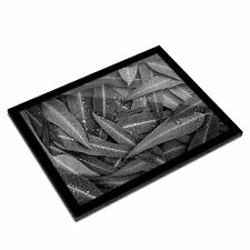 A3 Glass Frame BW - Eucalyptus Leaves Nature  #39064